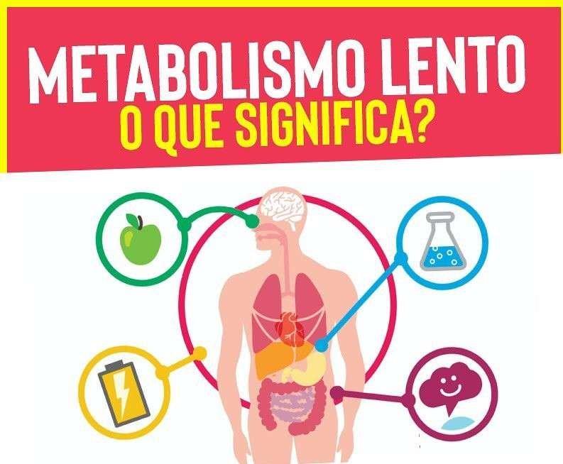 50868922 1067929506713091 1619669073975574528 n Como Acelerar o Metabolismo Para Emagrecer - 12 Dicas Certeiras
